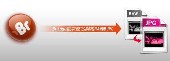 梅問題-Photoshop教學-Bridge批次命名與轉檔RAW轉JPG