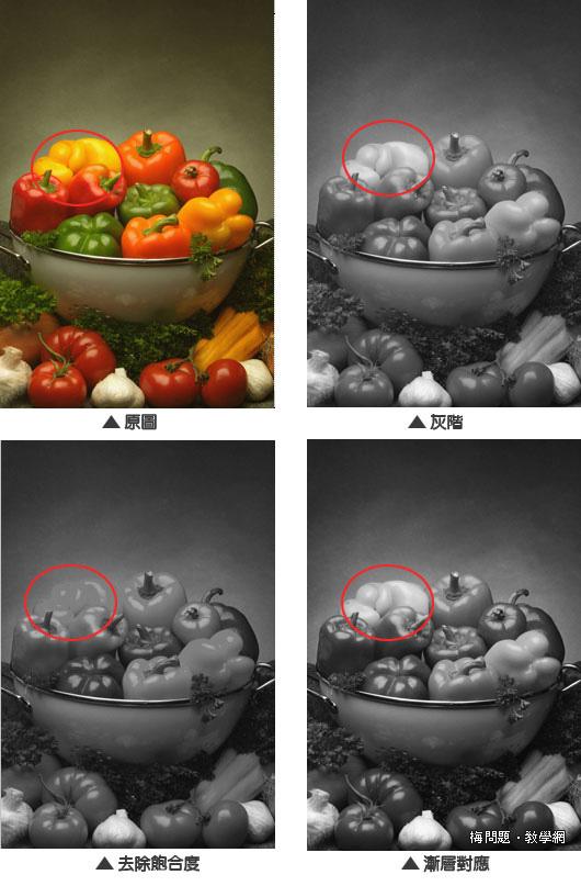 Photoshop 後製修圖  - Photoshop 教學 - 彩色照片轉黑白照片的最佳方法 - color2Gay01