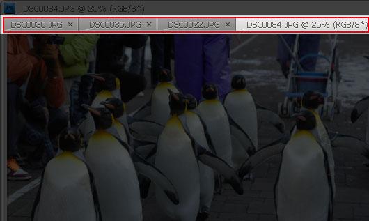 Adobe CS4,梅問題教學網