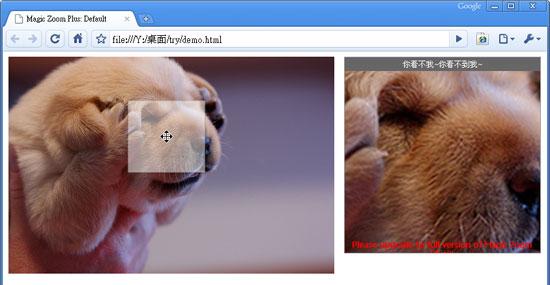 網頁套件-圖片滑入自動縮放預覽外掛MagicToolBox
